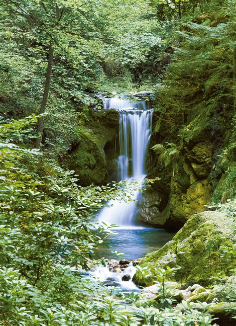 Waterfall Wall Murals waterfall in spring wall mural buy at europosters