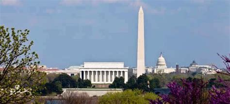 flights from hong kong to washington dc best deals last minute flights from the airfare experts
