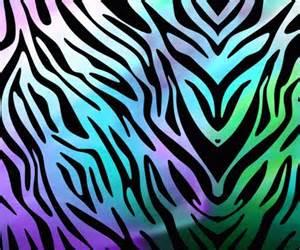 what color are zebra stripes purple zebra wallpaper wallpapers zebras