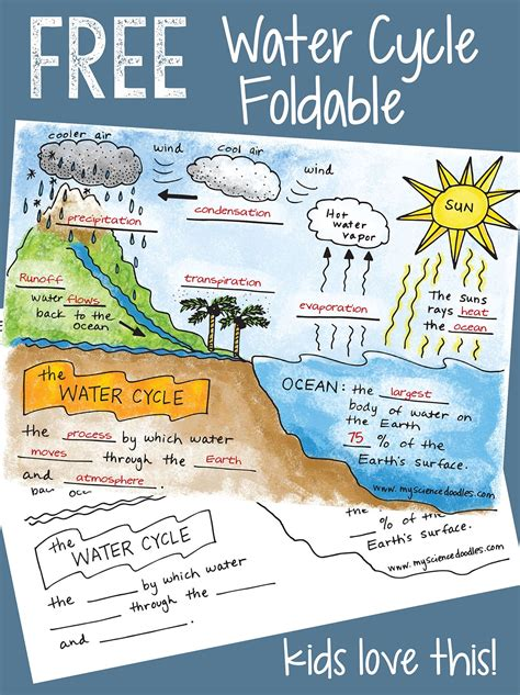 Science Doodle Free The Water Cycle Interactive Notebook Bundle Freebie Science Water Cycle Water Cycle Comic Template