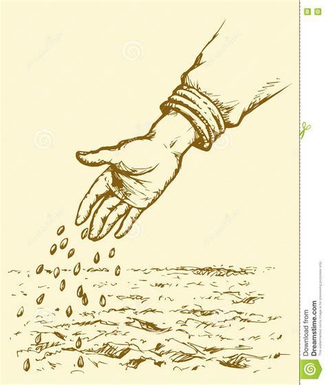 Hand Sowing Seed In Plowed Field. Vector Drawing Stock