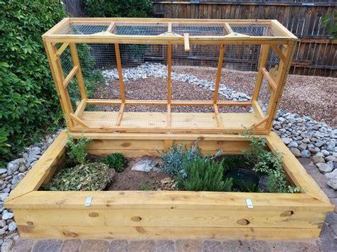 outdoor habitat for ornate and desert box turtles easy
