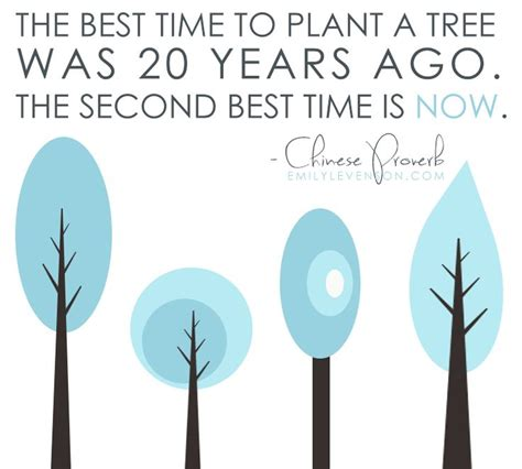 Quot The Best Time To Plant A Tree Was 20 Years Ago The When Is The Best Time To Plant A Vegetable Garden