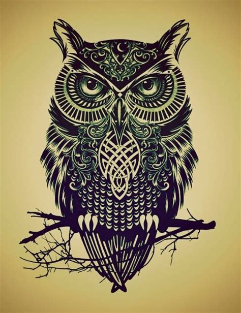 owl tattoo sketch tumblr owl drawing tumblr tattoos pinterest search