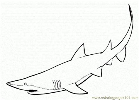shark fin coloring page shark fins coloring page free shark coloring pages