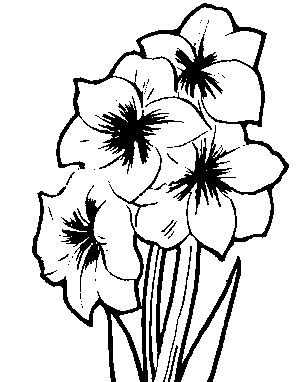 clipart of flowers coloring pages clipart christian clipart images of flowers