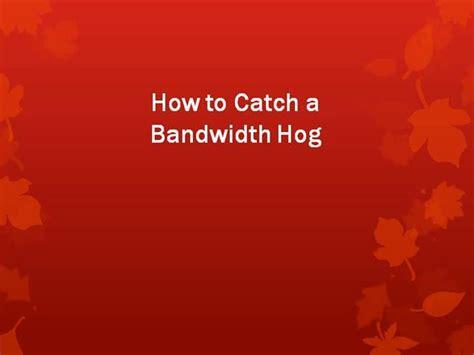 how to a hog catch how to catch a bandwidth hog authorstream