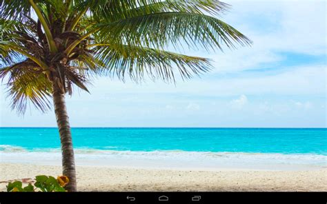 google images beach beach wallpaper android apps on google play