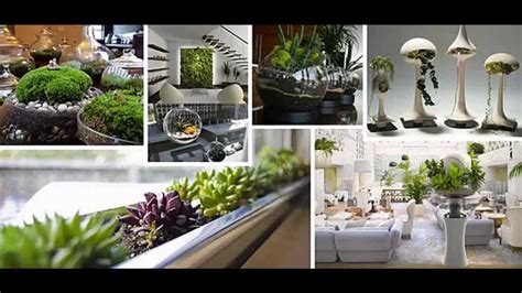 garden ideas indoor garden ideas apartment