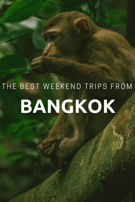 The Weekend Readfrom The Best Of The Best In by The Best Weekend Trips From Bangkok Mad Monkey Hostels