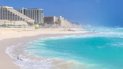police find 8 bodies, some dismembered, in cancun streets