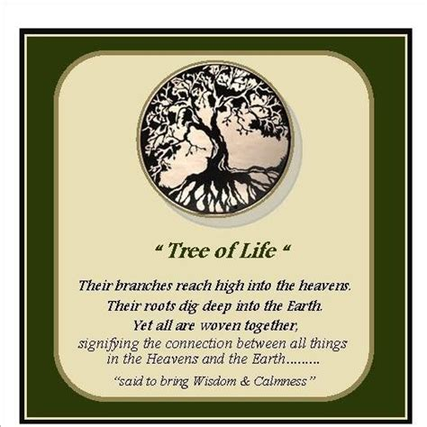symbolism of trees meaning of the tree of life google search school