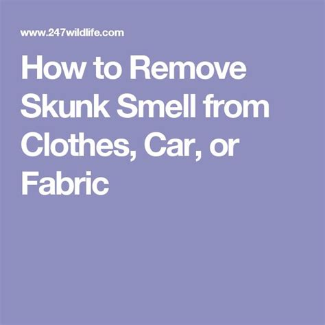 8 Ways To Remove Smell From Clothes by 1000 Ideas About Skunk Smell Remover On Skunk