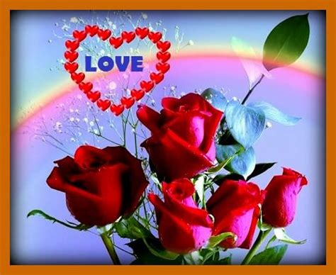 imagenes para mi amor bonito imagenes rosas rojas naturales para mi esposa