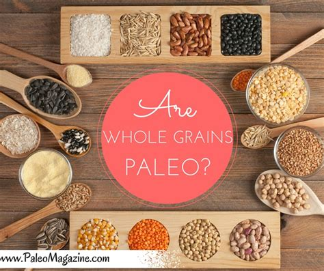 paleo with whole grains are whole grains paleo