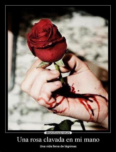 imagenes de corazones con una rosa clavada una rosa clavada en mi mano desmotivaciones