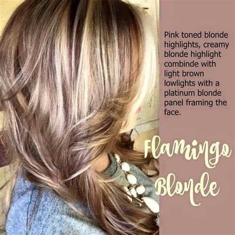 blonde hairstyles names 25 best ideas about hair color names on pinterest