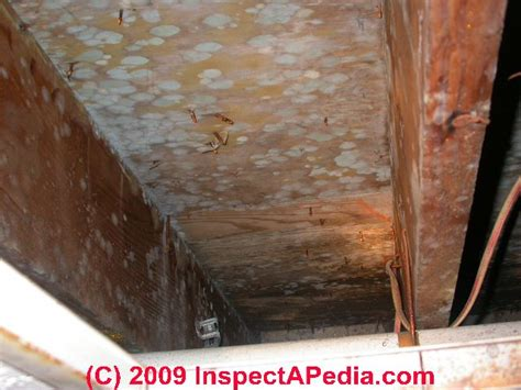 how to remove mildew from wood cabinets mold on wood cabinets mf cabinets