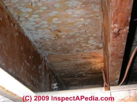 Moldy Subflooring in Buildings