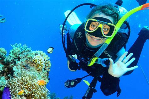dive great barrier reef tusa dive great barrier reef diving