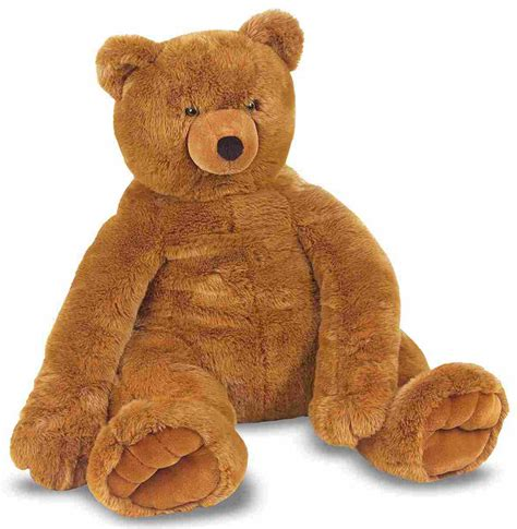 what is a teddy teddy large teddy teddy