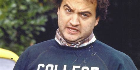 is animal house on netflix animal house netflix 28 images unseen untold national