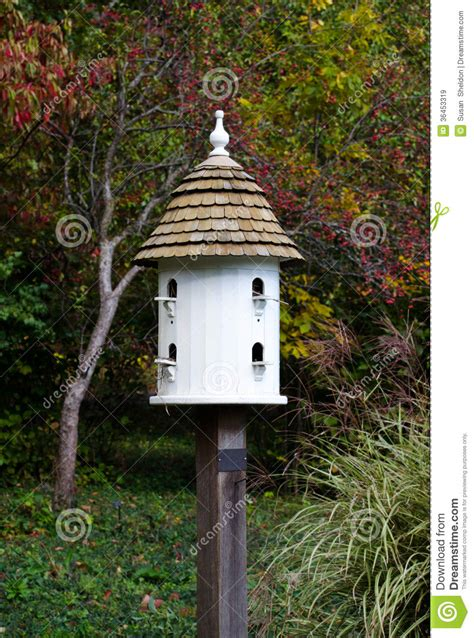 fancy white bird house royalty  stock images image