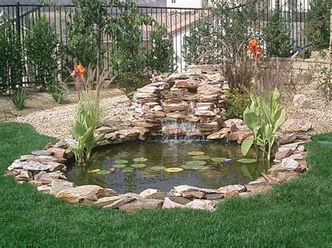 Building A Small Backyard Pond Sunland Water Gardens