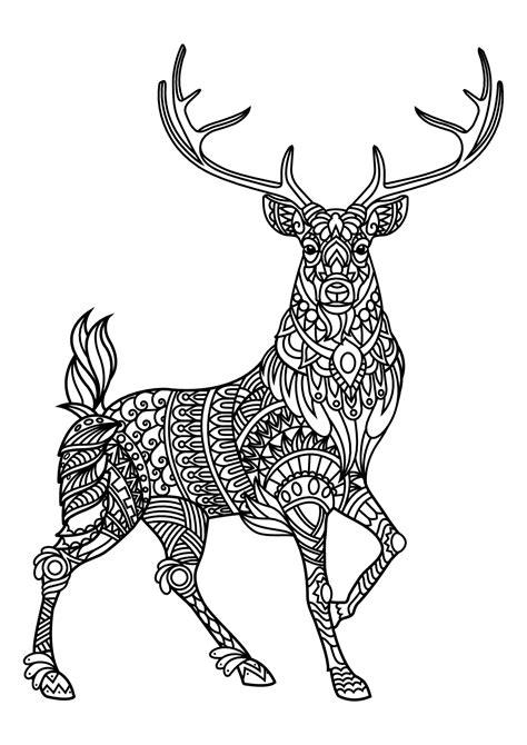 imagenes para colorear venado livre gratuit cerf cerfs coloriages difficiles pour