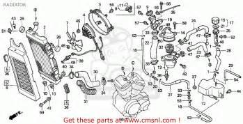 honda vt600cd shadow vlx deluxe 1995 usa radiator schematic partsfiche