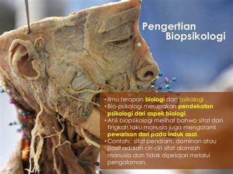 biopsikologi adalah biopsikologi proses sensori motorik