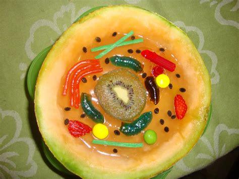 como hacer una celula con dulces estrategias innovadoras para estimular el gusto por la
