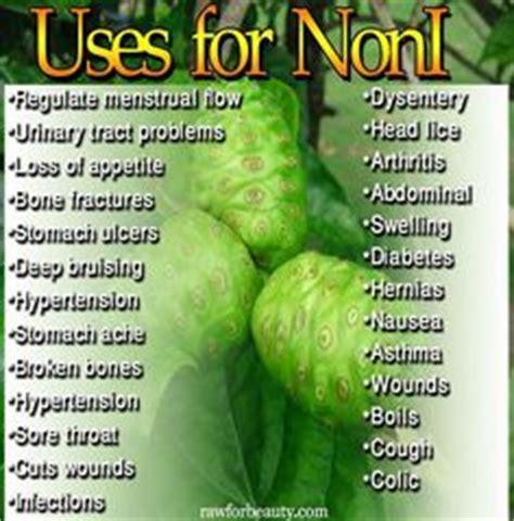 Vitamin Tahitian Noni Family health benefits of organic noni fruit powder at nature s