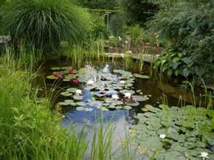 construire un bassin de jardin dossier