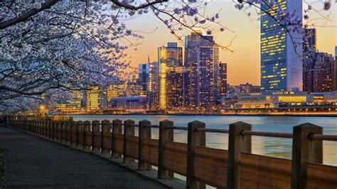 cosa fare a new york in primavera idee di viaggio nella grande mela in fiore
