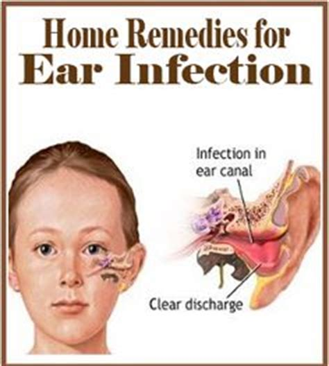 1000 images about ears on ear infection ear