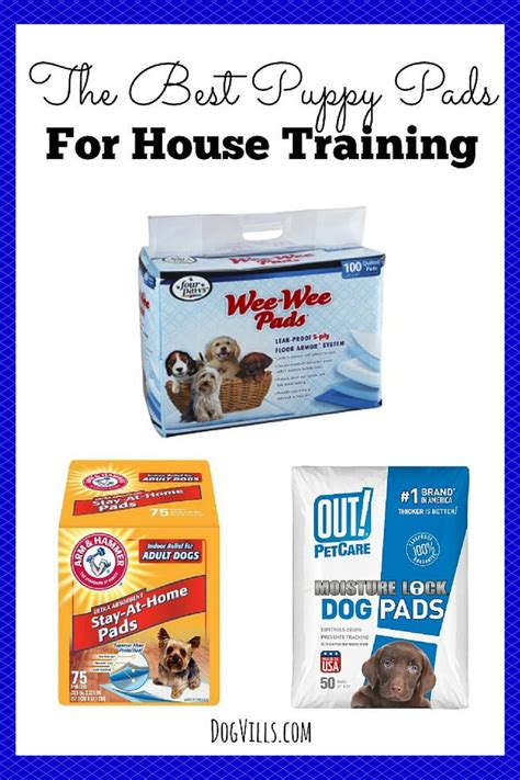 best puppy pads the best puppy pads for house dogvills