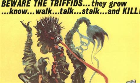 the day of the day of the triffids york council fights back steve galloway