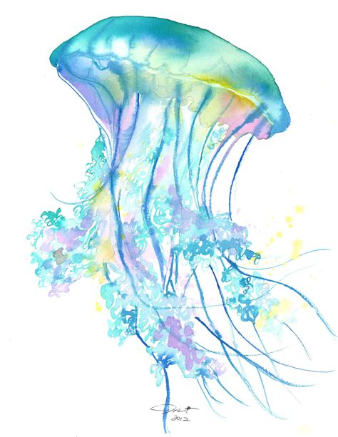 original watercolor jellyfish study no 4 painting by jessica