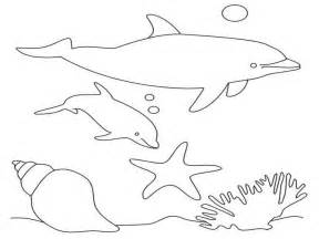 what color are dolphins dolphin coloring pages 2 coloring