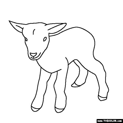 baby animals  coloring pages page