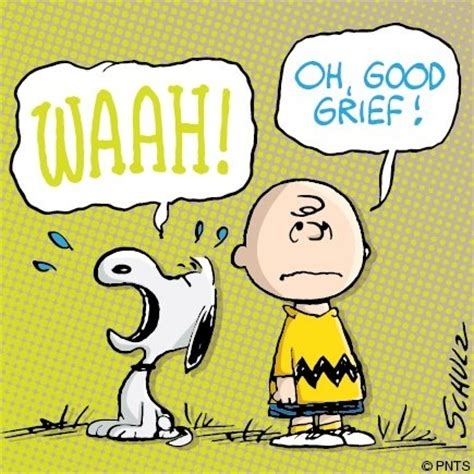 Good Grief Meme - charlie brown and snoopy meme archives rachel vankoughnet