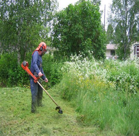 imagenes graciosas de jardineros cubelles jardineros jardineria cesped podas