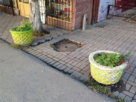 Walk Planter by Flower Planters Walking Almaty