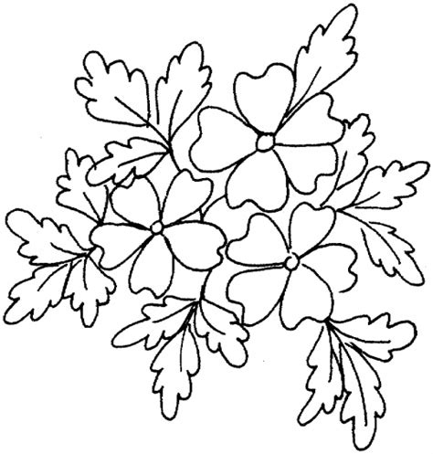 coloring pages of dogwood flowers free coloring pages of dogwood flowers
