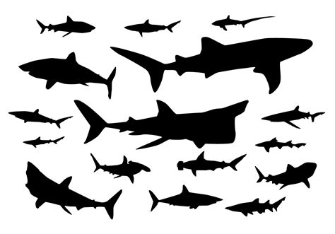 silhouette vector shark silhouette vectors download free vector art stock