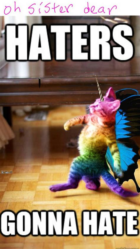 Cat Rainbow Meme - rainbow butterfly kitty showing gallery for rainbow