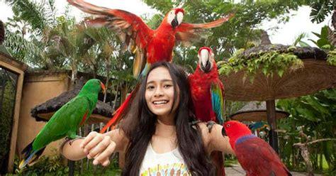 Tiket Bali Bird Park Dewasa pasar sukawati bali tempat membeli oleh oleh khas bali harga murah