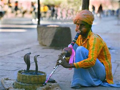 Everyone A Charmer by 13 Of The Most Oddest In India You Won T Believe Exist