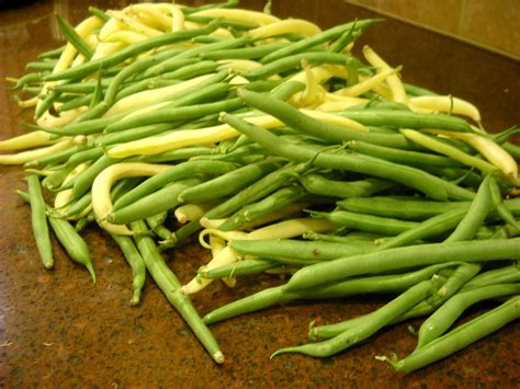 school of eating good cooking fresh green beans